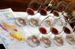 İncirli Şaraphane'de Gusto Şarap Kursları - 2. Etap