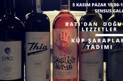 Sensus Galata'da Küp Şarapları tadımı