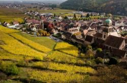 Alsace - Fransa
