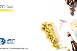 GastronoMetro'da WSET 2. Seviye Şarap Eğitimi