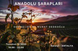 Anadolu Şarapları Şarap Tadımı